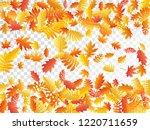 oak  maple  wild ash rowan... | Shutterstock .eps vector #1220711659