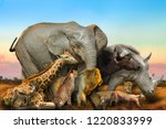 side view of big five and wild...   Shutterstock . vector #1220833999