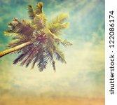 vintage palm background | Shutterstock . vector #122086174