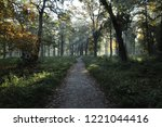 morning in autumn old park  an... | Shutterstock . vector #1221044416