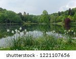 scenic view of a calm lake and... | Shutterstock . vector #1221107656