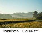 the morning scene of rice farm... | Shutterstock . vector #1221182599