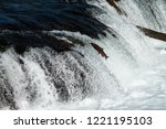 Salmon jumping up Brooks Falls, with river and white water in the background, Katmai National Park, Alaska, USA