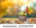 apples in a basket in autumn... | Shutterstock . vector #1221367549