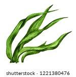 Watercolor Green Seaweed....