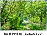 park and schwarzwald museum in...   Shutterstock . vector #1221386239