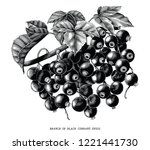 branch of black currant... | Shutterstock .eps vector #1221441730