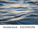 water surface ripples. macro... | Shutterstock . vector #1221534196