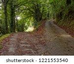 camino waymark at a dirt road... | Shutterstock . vector #1221553540