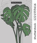 monstera deliciosa tropical... | Shutterstock .eps vector #1221555616
