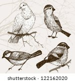animal,background,bird,branch,bullfinch,collection,domestic,dove,drawing,eco,ecological,education,elements,fauna,fogy