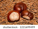 Chestnut On The Background Of...
