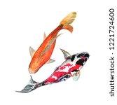 Koi Carp Fish Watercolor...