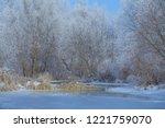 snowy winter landscape. frozen...   Shutterstock . vector #1221759070