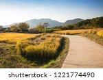beautiful autumn rice field and ... | Shutterstock . vector #1221774490