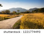 beautiful autumn rice field and ...   Shutterstock . vector #1221774493