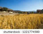 beautiful autumn rice field and ... | Shutterstock . vector #1221774580