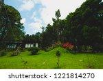 plenty of pine at bor keaw pine ... | Shutterstock . vector #1221814270