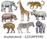 set of african animals.... | Shutterstock .eps vector #1221899590