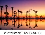 silhouette sugar palm tree on... | Shutterstock . vector #1221953710