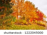 beautiful foliage in new england | Shutterstock . vector #1222045000