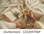 cozy winter evening   warm...   Shutterstock . vector #1222047469