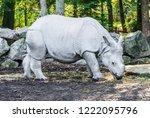 indian rhino beautiful animal...   Shutterstock . vector #1222095796