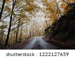 road in the autumn forest in... | Shutterstock . vector #1222127659