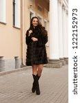 elegant woman in brown fur coat ... | Shutterstock . vector #1222152973