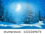 beautiful winter night ... | Shutterstock . vector #1222269673