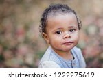 close up portrait of a...   Shutterstock . vector #1222275619