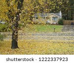 Autumn Yellow Trees With Fallen ...