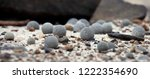 pebbles of champ island  franz... | Shutterstock . vector #1222354690