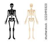 human skeleton. back and white... | Shutterstock .eps vector #1222493323