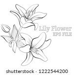 vector sketch drawn nature... | Shutterstock .eps vector #1222544200