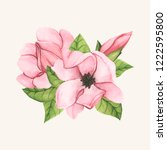 hand drawn saucer magnolia... | Shutterstock .eps vector #1222595800