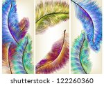 colorful vector ferns for your...
