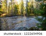 autumn forest river scene....   Shutterstock . vector #1222654906