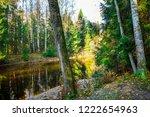 autumn forest river shore view. ...   Shutterstock . vector #1222654963