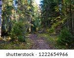 autumn forest path view. deep... | Shutterstock . vector #1222654966