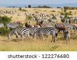 great migration in masai mara... | Shutterstock . vector #122276680