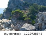 Large Boulders And Small Trees...