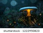 fairy  glowing mushroom in the... | Shutterstock . vector #1222950823