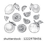 citrus icons set. hand drawn... | Shutterstock .eps vector #1222978456