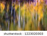 september 19  2018   colorado ... | Shutterstock . vector #1223020303