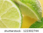 Lemon And Lime Slices In Tonic...