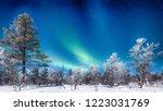 panoramic view of amazing... | Shutterstock . vector #1223031769