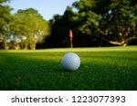 golf ball on green in beautiful ... | Shutterstock . vector #1223077393