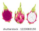 illustration of natural and... | Shutterstock . vector #1223083150
