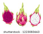 illustration of natural and... | Shutterstock .eps vector #1223083663